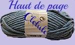 CREATION `HAUT DE PAGE` PELOTE BLEUE POUR SITE CLELULO