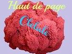 CREATION `HAUT DE PAGE` PELOTE ROUGE POUR SITE CLELULO